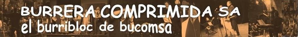 BURRERA COMPRIMIDA S.A. -  bucomsa -               dietari de capçalera