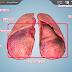 Living Lung: ¡si respira...!