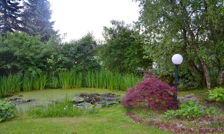 Garten im Hotel Klosterhof