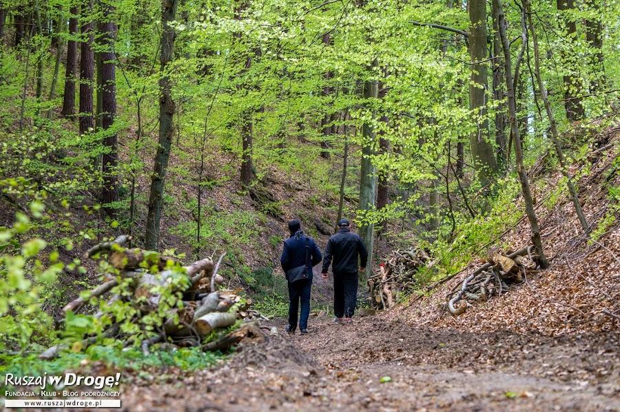 W drodze na Święty Kamień w Tolkmicku