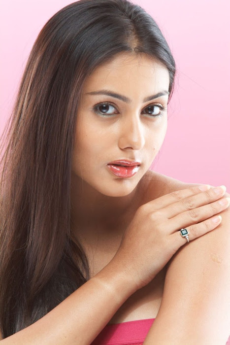 namitha shoot actress pics