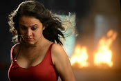 Nisha Kothari photos from Criminals movie-thumbnail-9