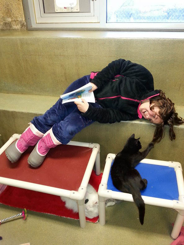 lectura a gatos Book Buddies