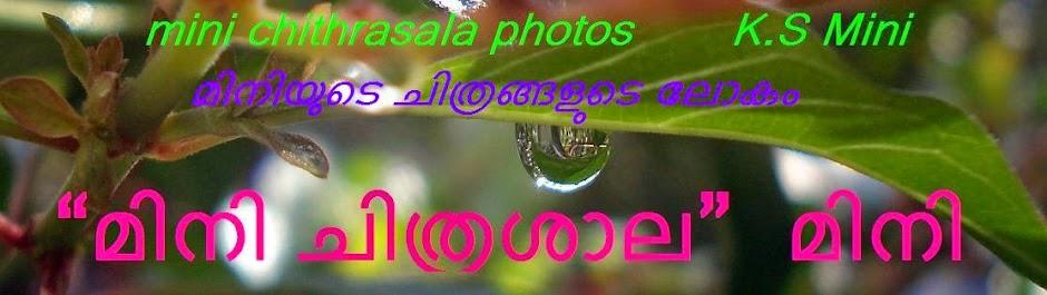 മിനി ചിത്രശാല 'photos'