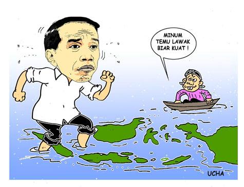 E-blusukan Jokowi, Opini Indonesia