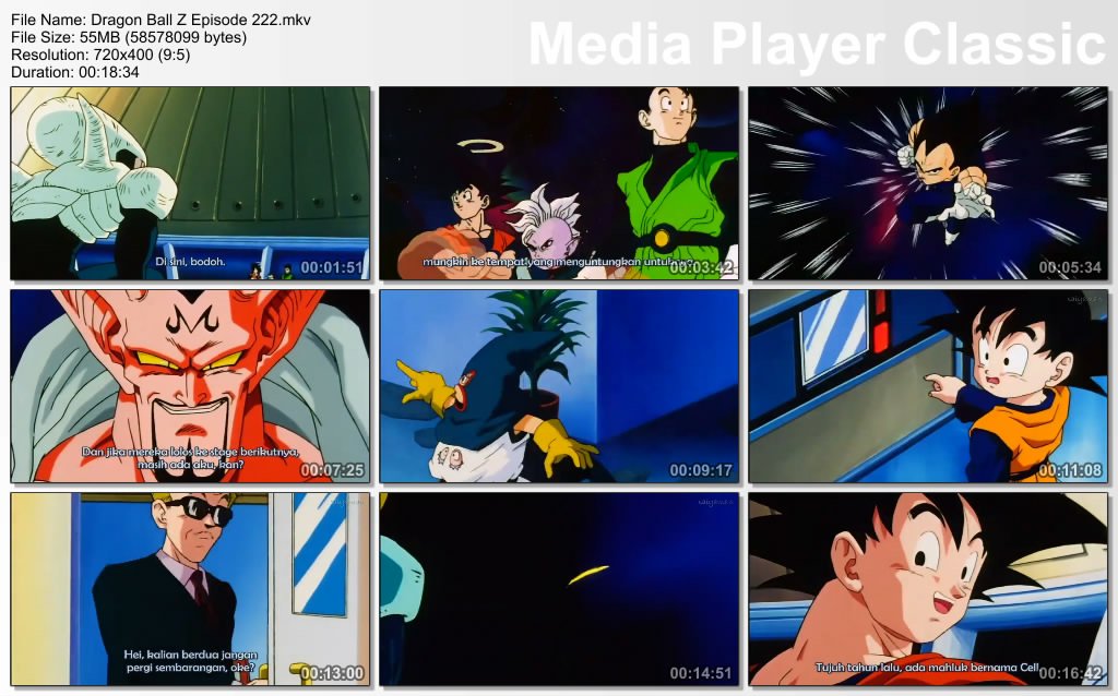 Download Film / Anime Dragon Ball Z Majin Buu Saga Episode 222 Bahasa