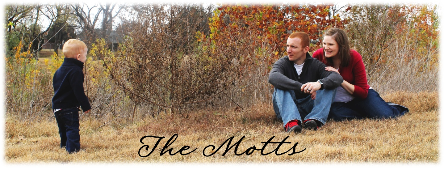 The Motts