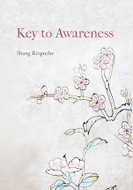 Shang Rinpoche's books