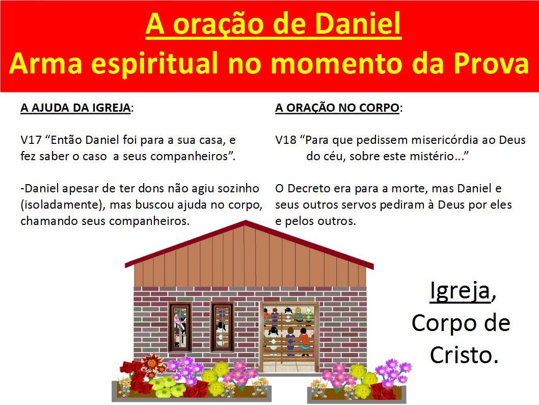 flores no jardim de deus : flores no jardim de deus:quinta-feira, 25 de agosto de 2011