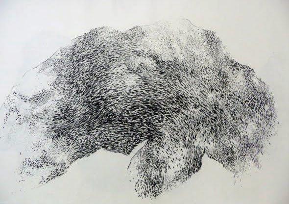 Fusain / papier 75x100 2013