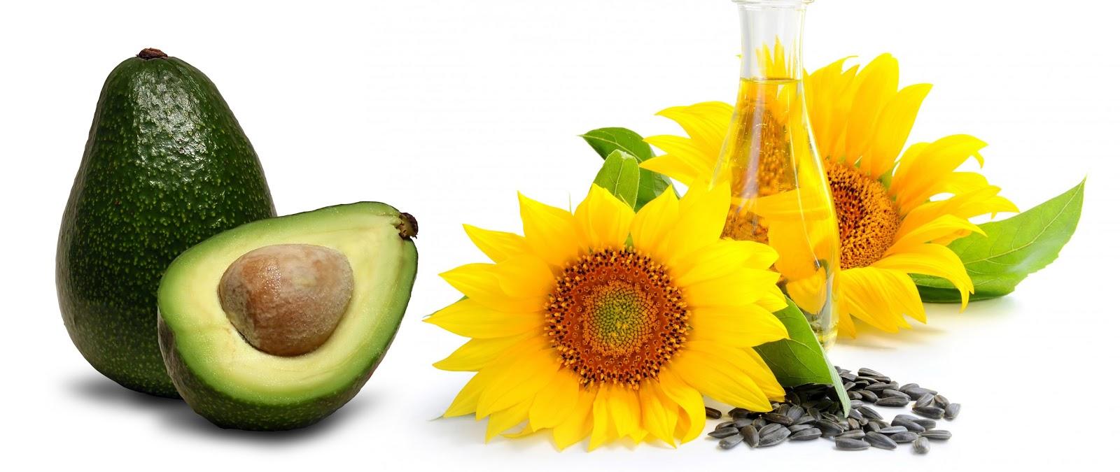 Tipos de Aceite Vegetal Tipos de Aceites de Oliva