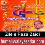 http://www.humaliwalayazadar.com/2015/02/zill-e-raza-manqabat-2015.html