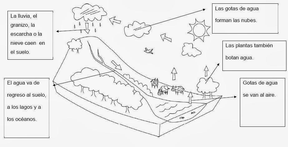El Ciclo del Agua para colorear | Dibujos para Niños