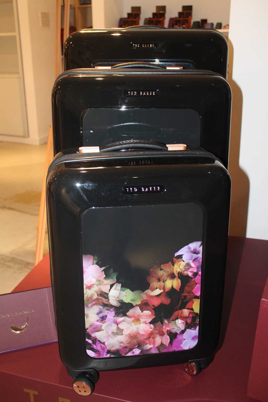 Stylish Suitcases From Lulu Guinness Ted Baker Tumi And Brics