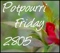 2805 - Potpourri Friday