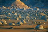 Western Desert Safari
