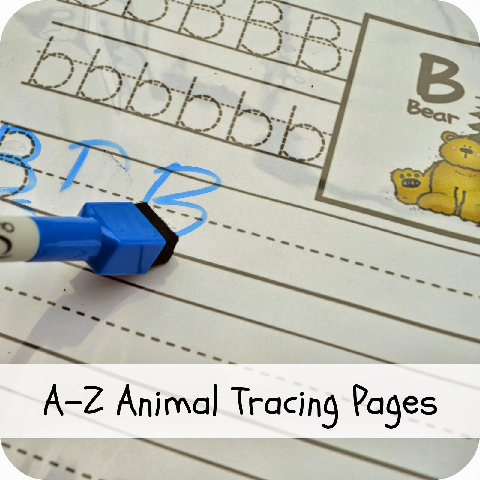 A-Z Animal Tracing Pages