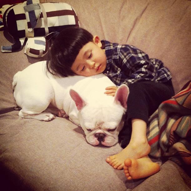 Boy and His French Bulldog