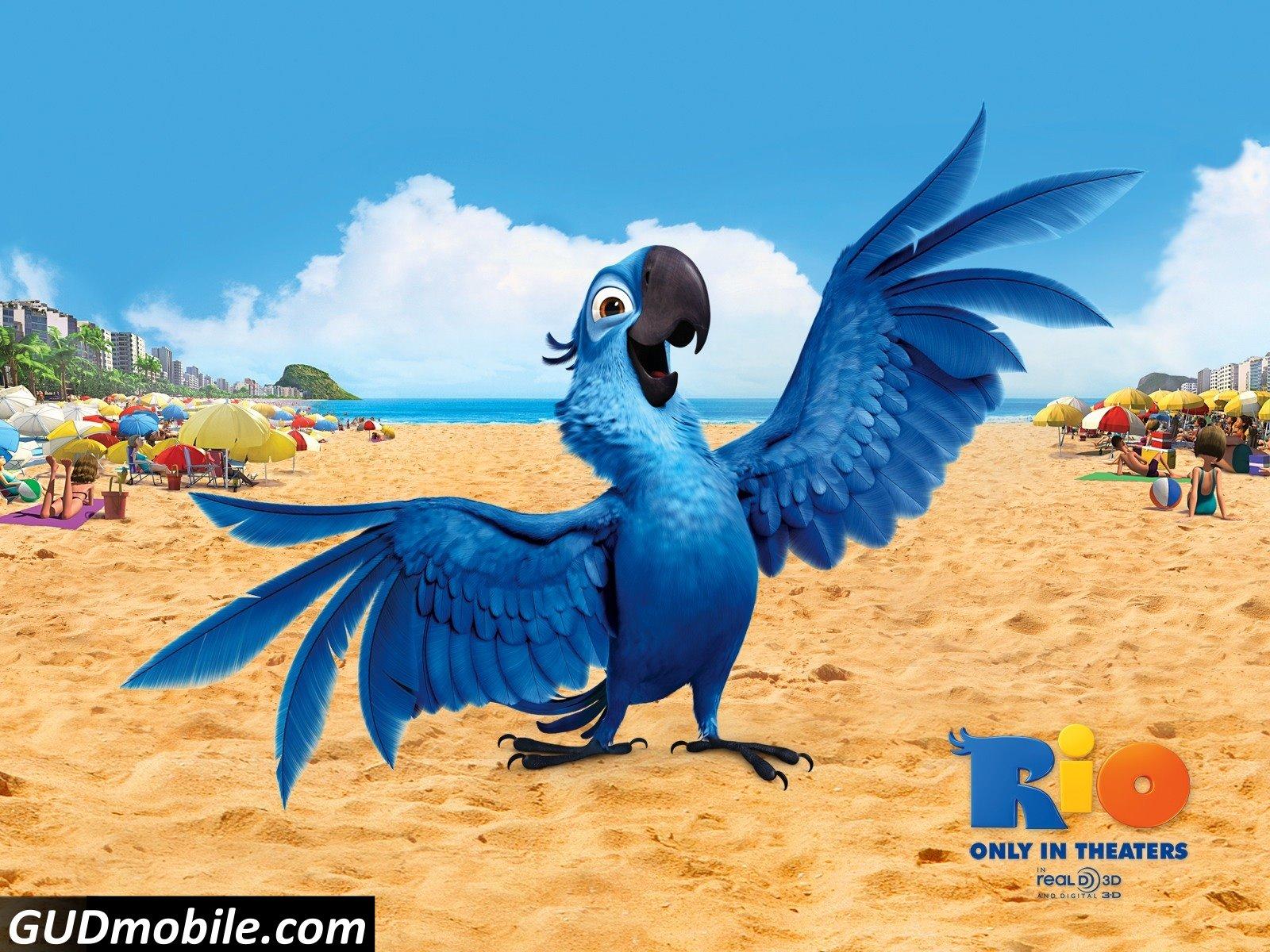 Wonderful Wallpaper High Resolution Movie - blu_bird_in_rio-1600x1200  Pic_637424.jpg