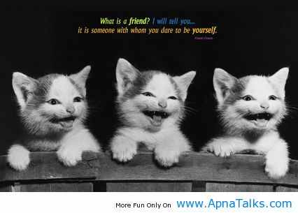 Friendship Quotes For Teenage Girls bogel funny pic...