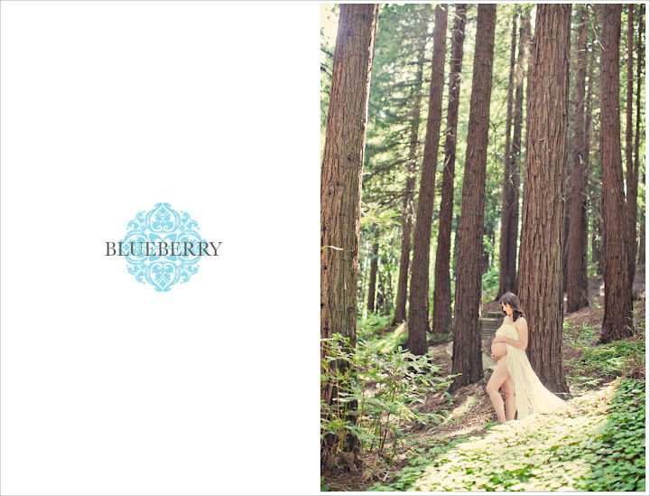 San Francisco natural lighting nude maternity photography session in redwood grove