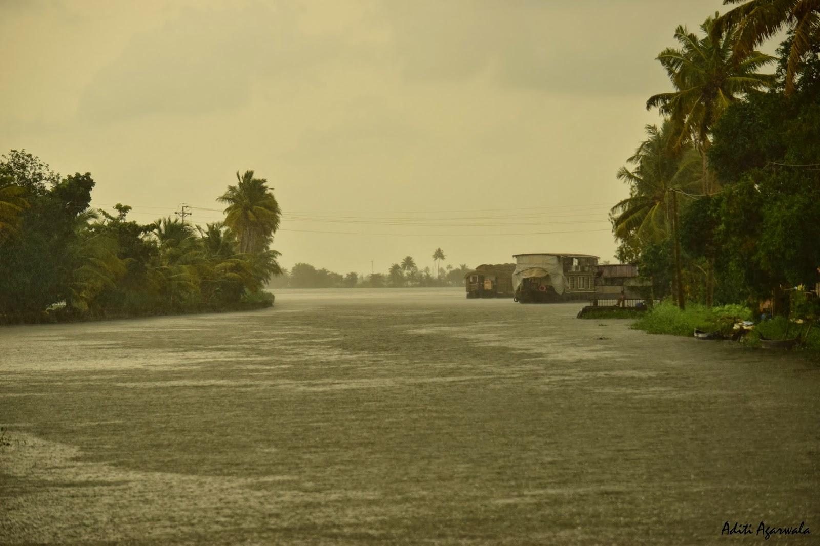 Houseboats on the backwaters of Allepey Backwaters, Kerala