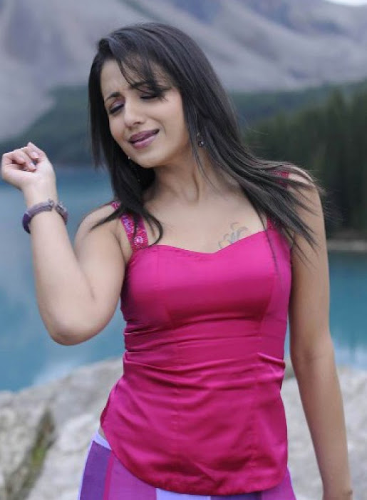 trisha in guard movie pink dress shoot song , hot photoshoot