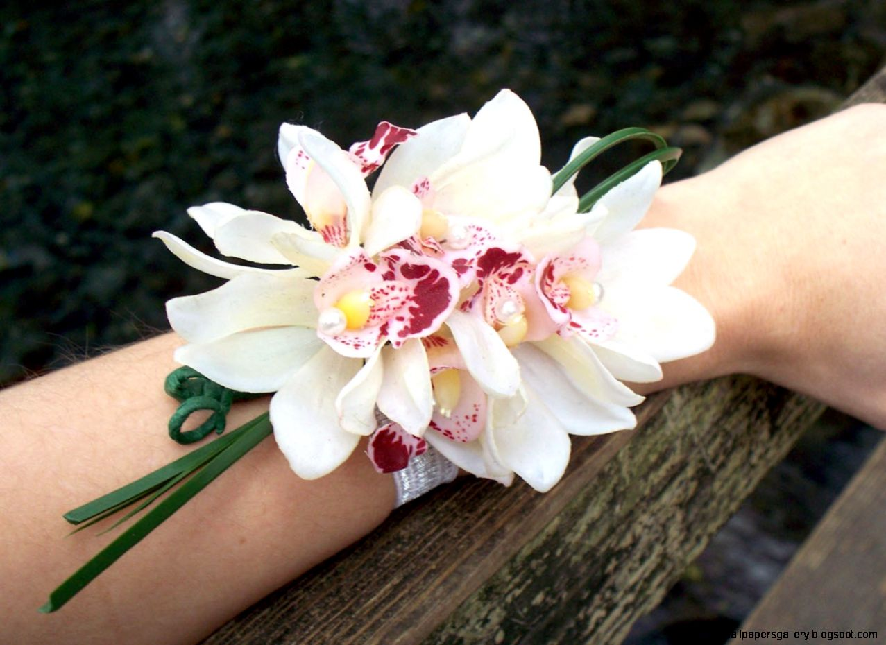 Image result for orchid corsages  Extras  Pinterest  Orchid