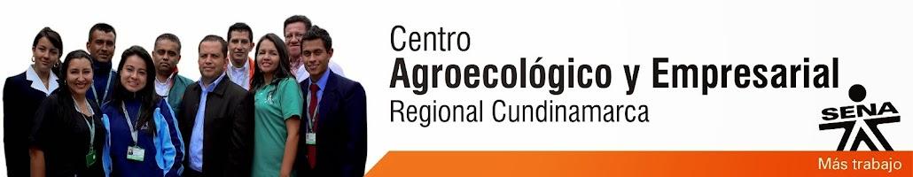 Blog Centro Agroecológico y Empresarial
