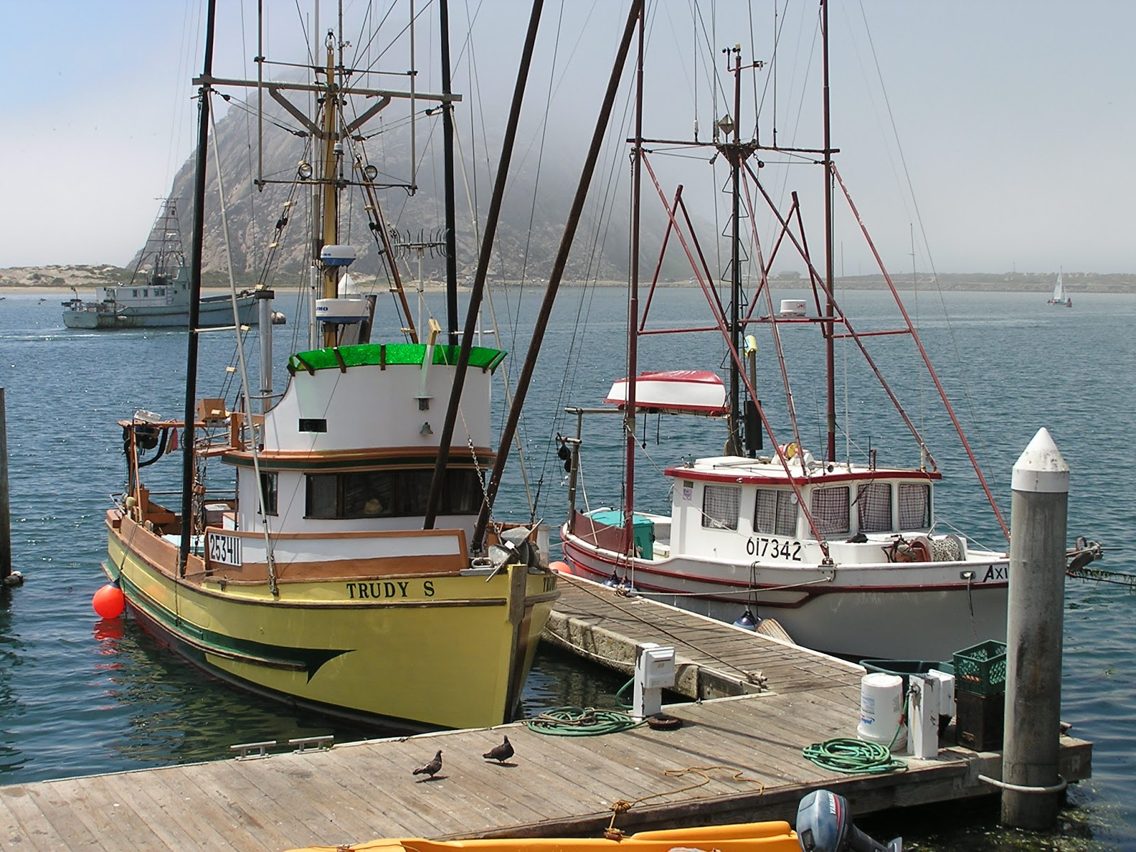 A new approach to fishery reform an interview with for Morro bay fishing