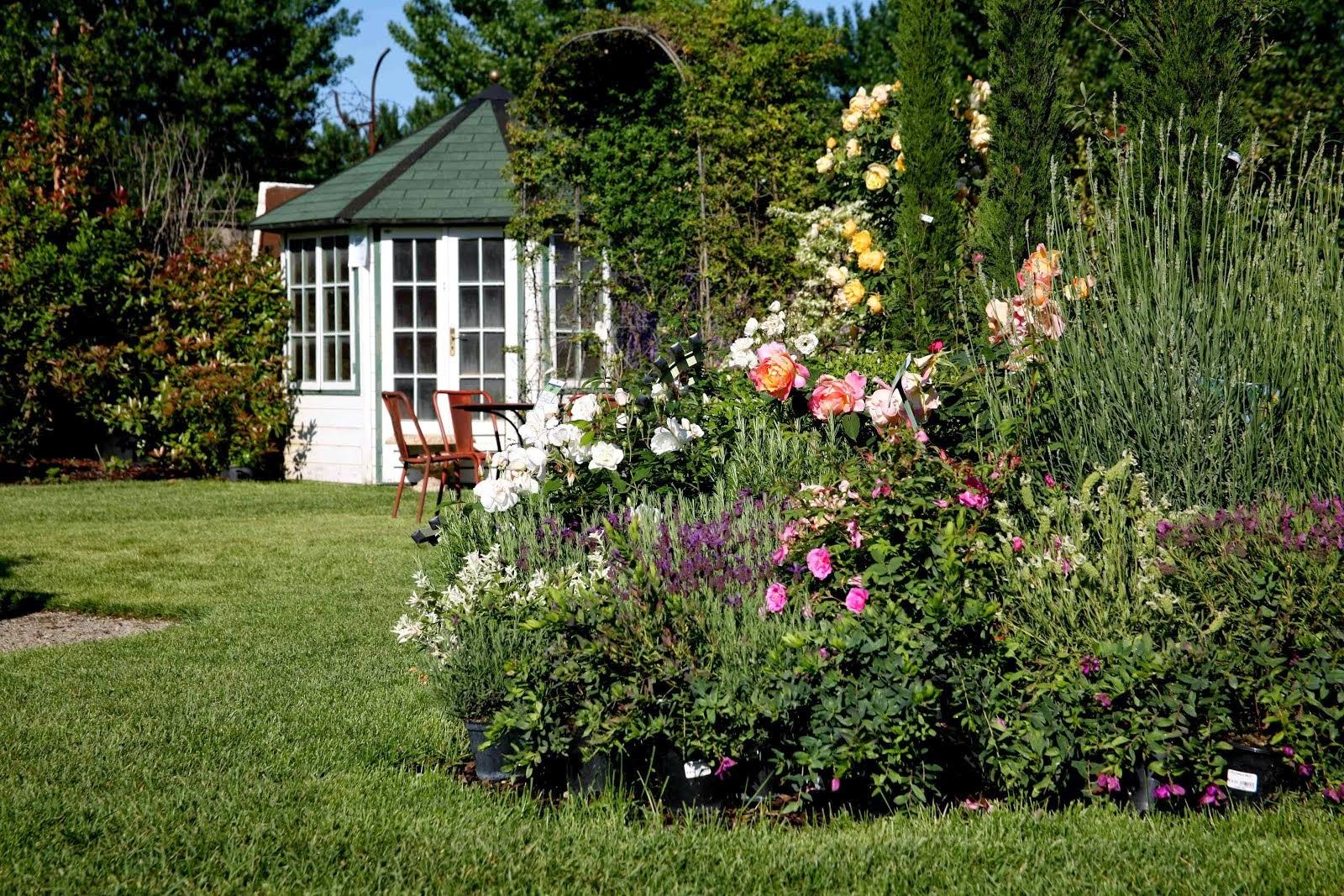 Mostre english garden mostra evento sullle erbacee for Giardini inglesi