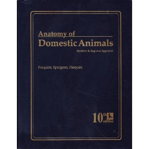 ALL BOOKS YOU NEED: Anatomy of Domestic Animals: Systemic & Regional ...