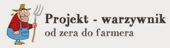 http://projekt-warzywnik.pl/