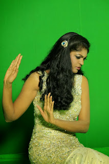 Twinkle Gupta Picture shoot stills(6)