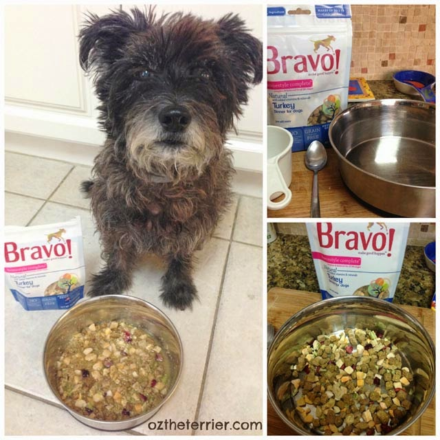 Oz the Terrier says its easy to mix up Bravo Homestyle Complete raw diet for dogs