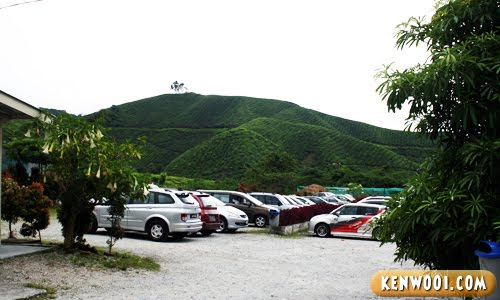 cameron highlands car park