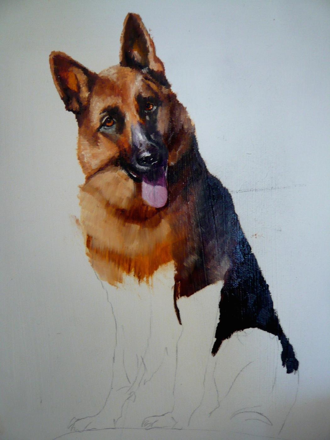 oil painting of a German Shepherd, 4th progress shot, a pet portrait by Karen