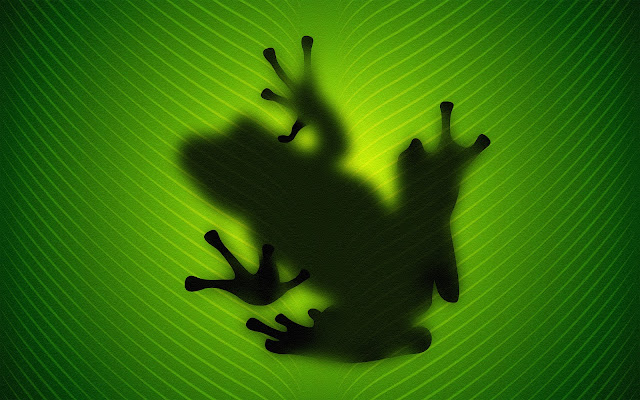 Frog behind the green leaf wallpaper
