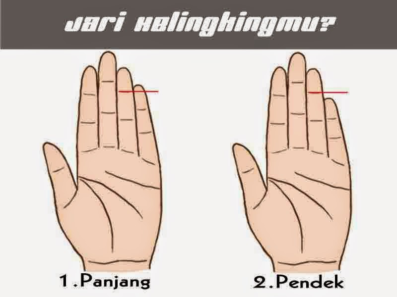 Jari Kelingking, Tangan, Hand