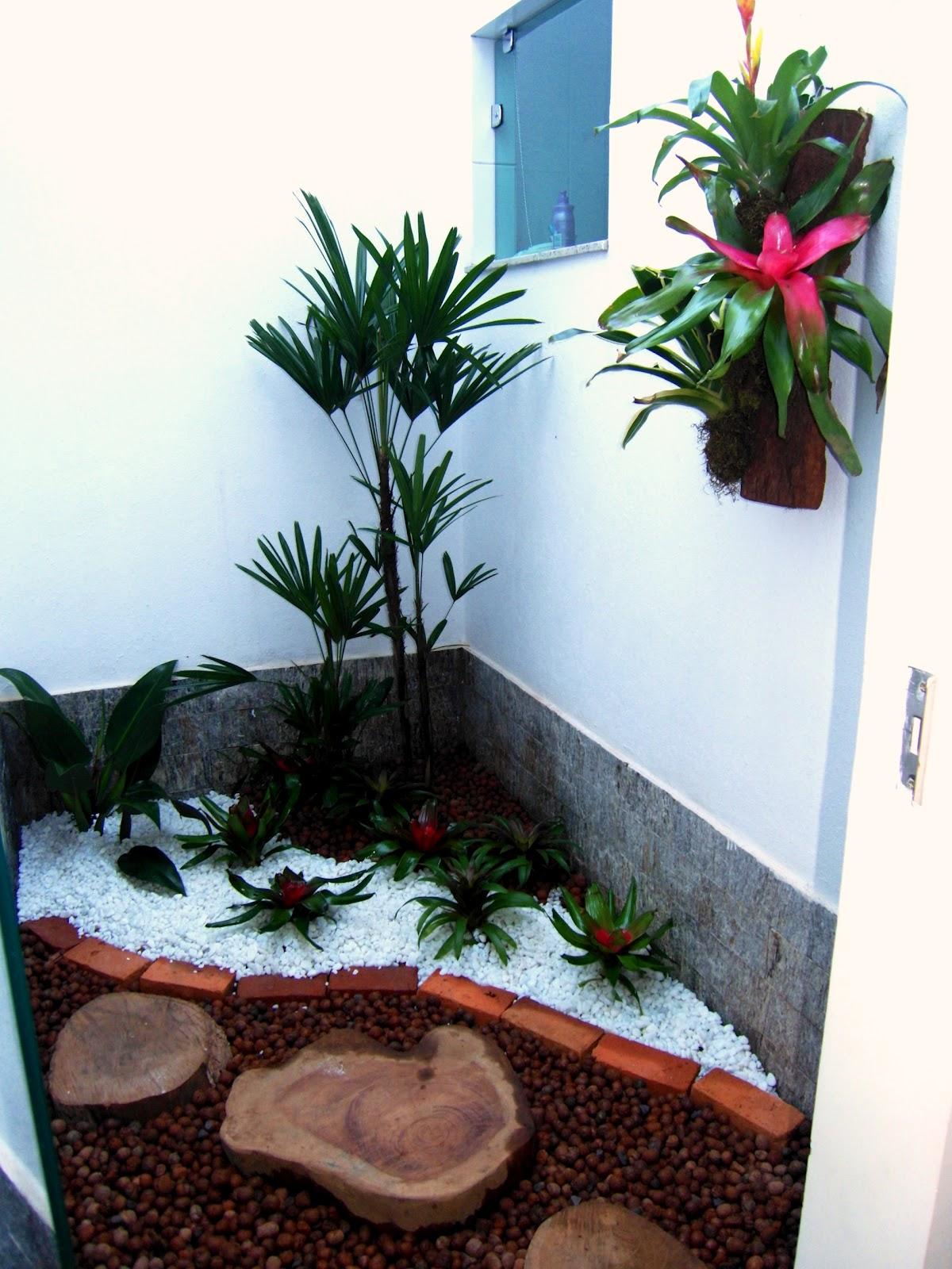 flores jardim de inverno : flores jardim de inverno:Claraboia vira um jardim de inverno, com especies de sombra, pacova