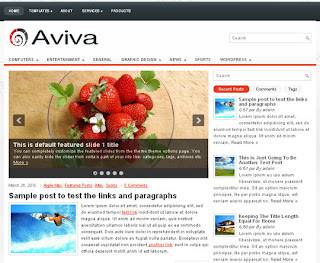 WordPress-Template Aviva