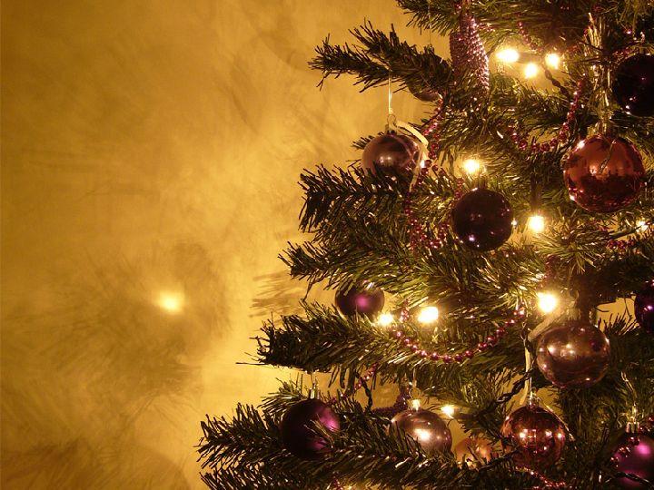 Oferta en manizales arboles de navidad guirnaldas - Arboles para navidad ...