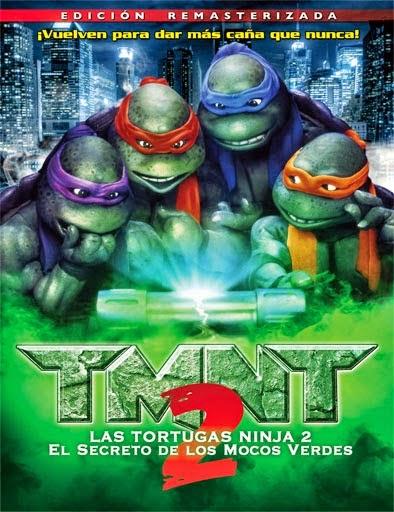 Ver Las Tortugas Ninja 2 (Teenage Mutant Ninja Turtles 2) (1991)