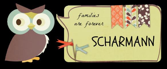 Scharmann Family Blog