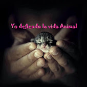 Yo defiendo la vida animal