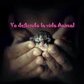 Yo defiendo la vida animal