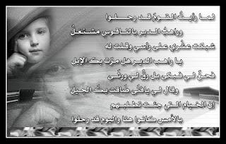سيوفي العراقي - صفحة 6 %D8%B5%D9%88%D8%B1+%D8%A7%D8%B4%D8%B9%D8%A7%D8%B1+-10
