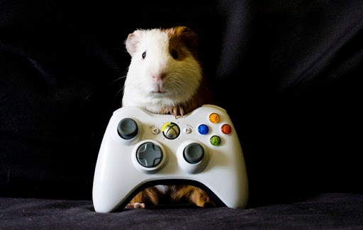 grado de videojuegos