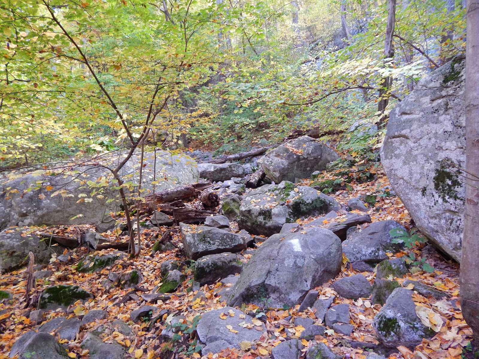 Those Who Wander: Stairway to Heaven - Appalachian Trail