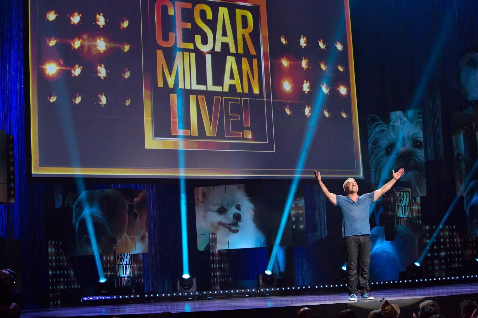 Cesar Millan: Viva Las Vegas!